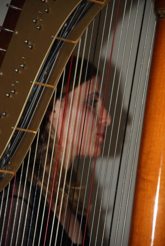 09 Concerto per Arpa - Un ricordo fra le note